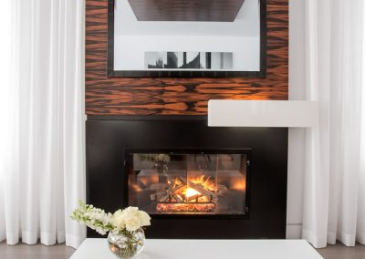 Fireplaces (10)